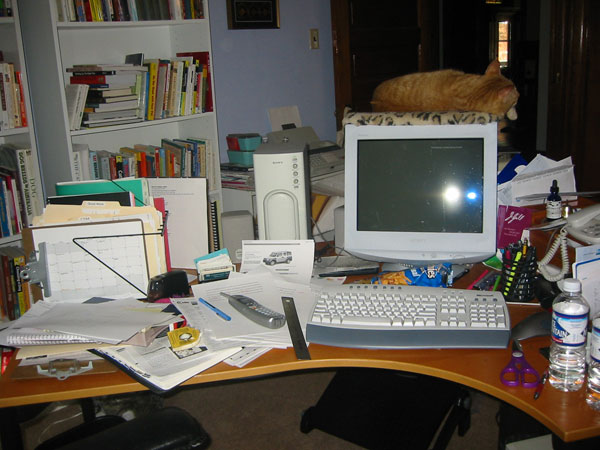 Messy home workstation with cat